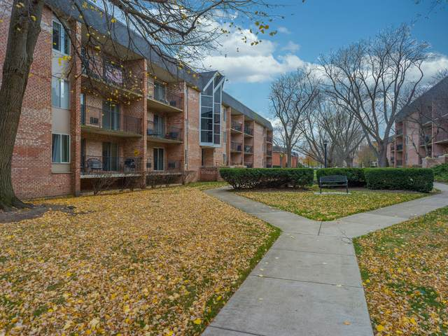 1001 N Mill Street #209, Naperville, IL 60563 (MLS #10963143) :: The Wexler Group at Keller Williams Preferred Realty