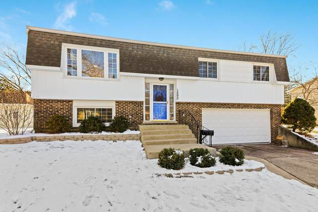 1290 Sussex Lane, Wheaton, IL 60189 (MLS #10963224) :: The Dena Furlow Team - Keller Williams Realty