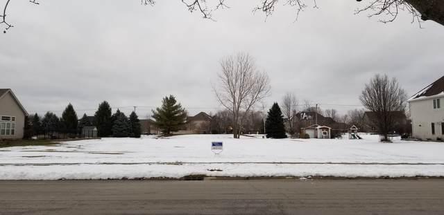 12921 Shelly Lane, Plainfield, IL 60585 (MLS #10963297) :: Schoon Family Group