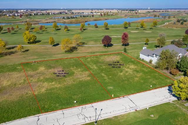 1237 Bush Boulevard, Bolingbrook, IL 60490 (MLS #10963618) :: Carolyn and Hillary Homes