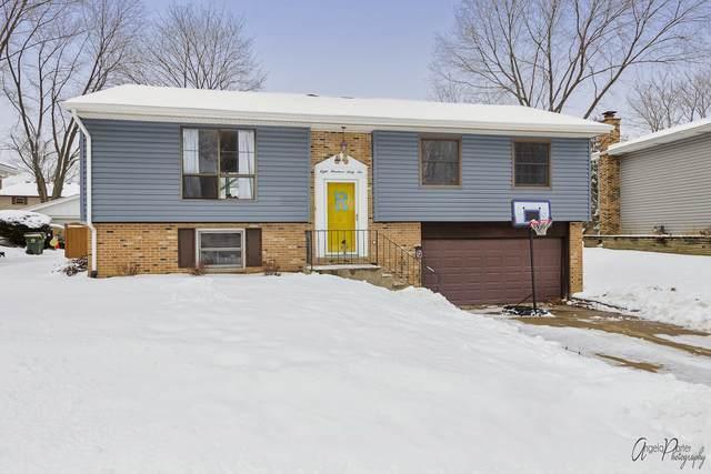 866 Hillandale Drive, Antioch, IL 60002 (MLS #10963956) :: Suburban Life Realty