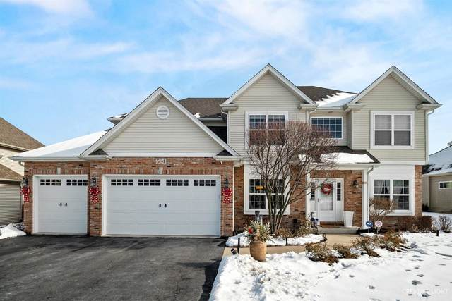 584 Poplar Drive, Yorkville, IL 60560 (MLS #10964012) :: Janet Jurich
