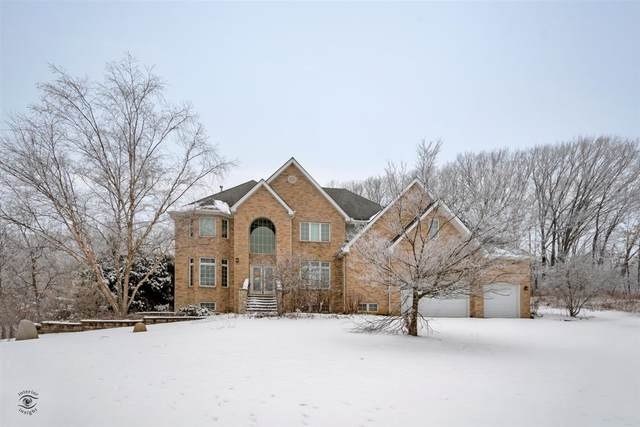 16432 Pine Hill Drive, Homer Glen, IL 60491 (MLS #10964098) :: The Wexler Group at Keller Williams Preferred Realty
