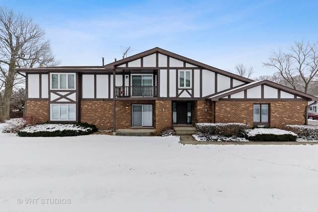 417 Manor Court D, New Lenox, IL 60451 (MLS #10964210) :: John Lyons Real Estate