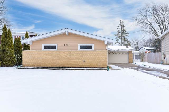 203 E Julia Drive, Villa Park, IL 60181 (MLS #10964389) :: Angela Walker Homes Real Estate Group
