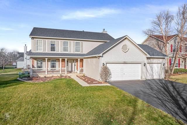 711 Eagle Brook Lane, Naperville, IL 60565 (MLS #10964550) :: Janet Jurich