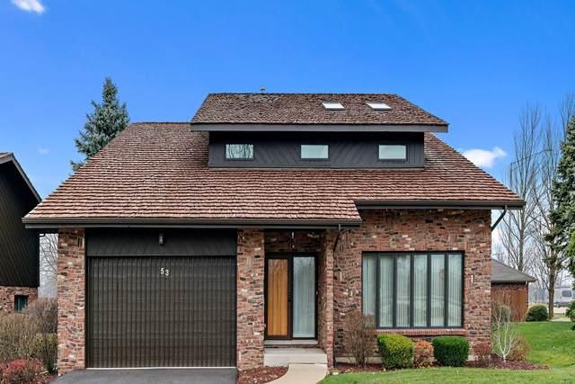 53 Lucas Drive, Palos Hills, IL 60465 (MLS #10964687) :: Suburban Life Realty