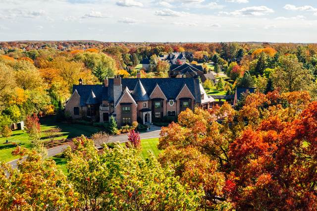 1112 Shamrock Court, Naperville, IL 60540 (MLS #10964782) :: Ani Real Estate