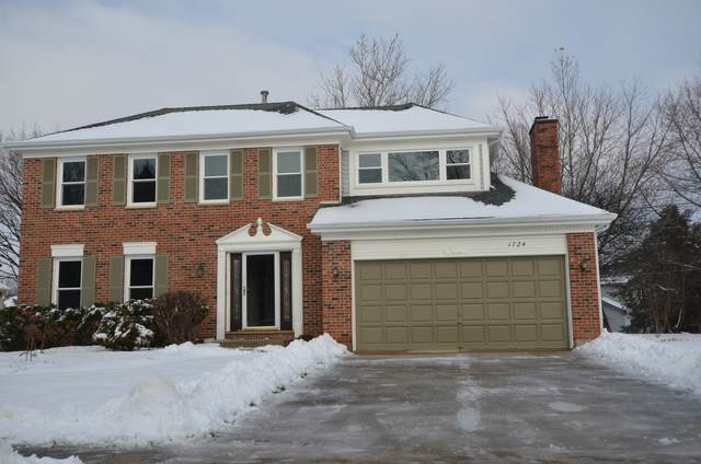 1724 Juliet Lane, Libertyville, IL 60048 (MLS #10964938) :: Jacqui Miller Homes