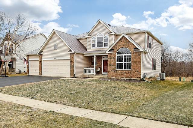 829 Sterling Heights Drive, Antioch, IL 60002 (MLS #10964953) :: Janet Jurich