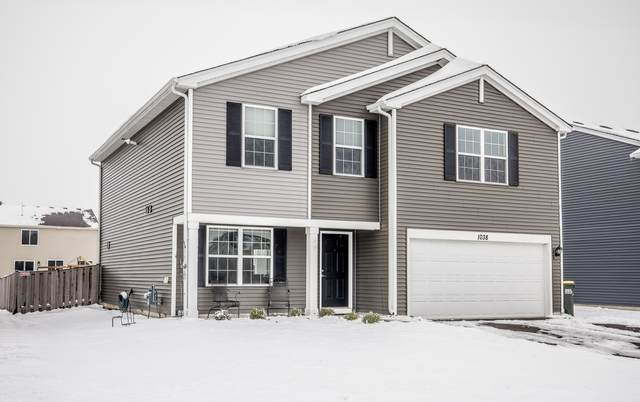 1038 Chestnut Drive, Pingree Grove, IL 60140 (MLS #10964980) :: Jacqui Miller Homes