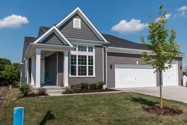 205 Jorrie Lane, Bloomingdale, IL 60108 (MLS #10965178) :: Janet Jurich