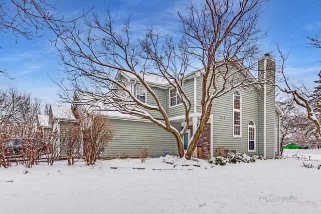 1219 Cranbrook Drive, Schaumburg, IL 60193 (MLS #10965486) :: John Lyons Real Estate