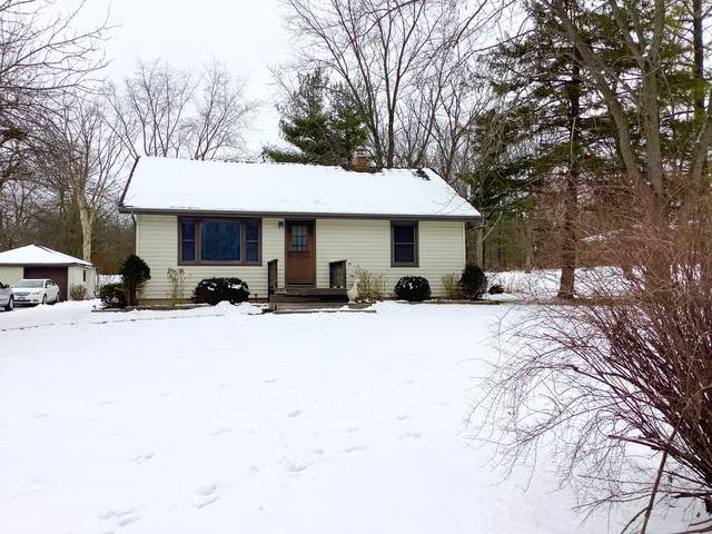 1230 N Vine Street, New Lenox, IL 60451 (MLS #10965777) :: The Wexler Group at Keller Williams Preferred Realty