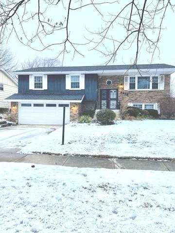 3318 Birchwood Drive, Hazel Crest, IL 60429 (MLS #10965823) :: Schoon Family Group