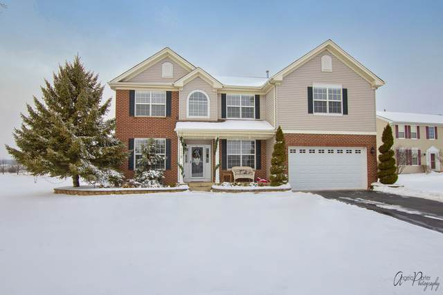219 Tralee Lane, Mchenry, IL 60050 (MLS #10965884) :: Schoon Family Group