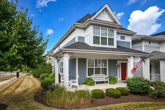 1311 Avery Avenue, Wheaton, IL 60189 (MLS #10966121) :: The Dena Furlow Team - Keller Williams Realty