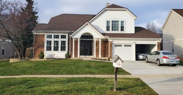 348 Wildberry Lane, Bartlett, IL 60103 (MLS #10966468) :: Jacqui Miller Homes