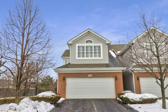366 Lunt Avenue, Schaumburg, IL 60193 (MLS #10966838) :: The Dena Furlow Team - Keller Williams Realty