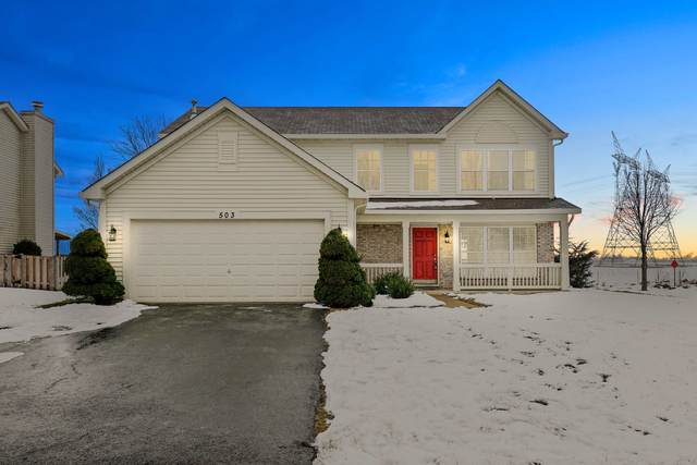 503 Alyssa Street, Plano, IL 60545 (MLS #10966978) :: Jacqui Miller Homes