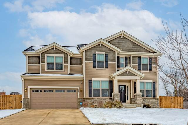 647 Sierra Court, Bartlett, IL 60103 (MLS #10967055) :: Janet Jurich