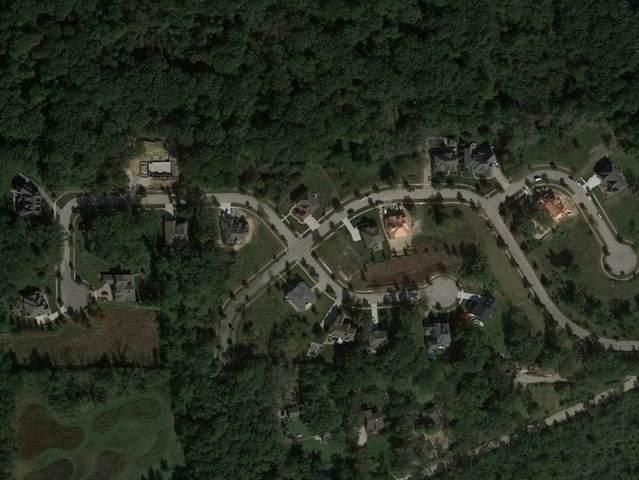 LOT 40 Oak Bluff Lane, Woodridge, IL 60517 (MLS #10967231) :: Helen Oliveri Real Estate