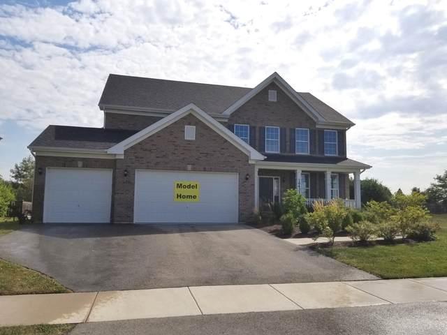 25431 W Rock Drive, Plainfield, IL 60586 (MLS #10967255) :: Jacqui Miller Homes
