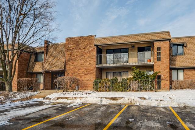 130 Old Oak Drive #242, Buffalo Grove, IL 60089 (MLS #10967360) :: Janet Jurich
