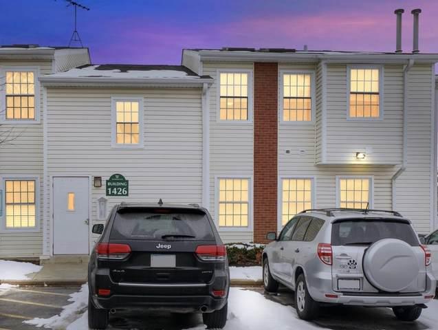 1426 E Wyndham Circle #201, Palatine, IL 60074 (MLS #10967569) :: Helen Oliveri Real Estate