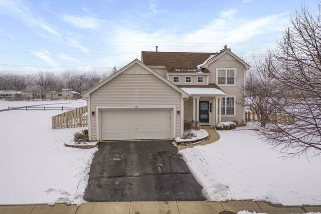423 Matena Drive, Oswego, IL 60543 (MLS #10967666) :: The Dena Furlow Team - Keller Williams Realty