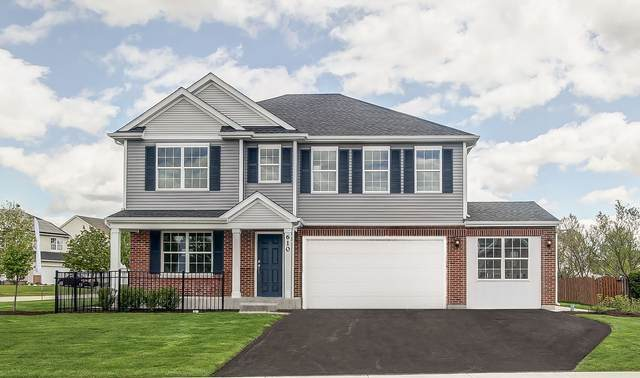 3506 Silver Falls Court, Joliet, IL 60431 (MLS #10967719) :: Littlefield Group