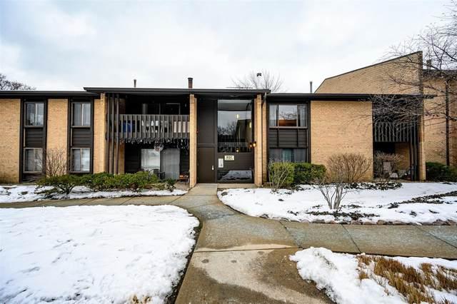 6157 Knoll Way Drive #202, Willowbrook, IL 60527 (MLS #10968051) :: Janet Jurich