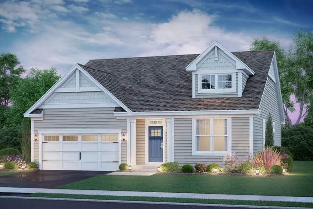 6 Saddle Court, Buffalo Grove, IL 60089 (MLS #10968306) :: Jacqui Miller Homes