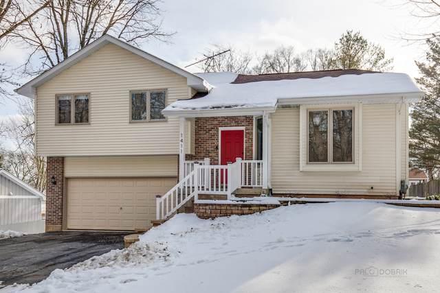1411 W Terrace Avenue, Johnsburg, IL 60051 (MLS #10968499) :: Touchstone Group