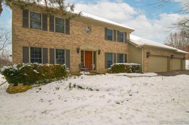 2N900 Bowgren Drive, Elburn, IL 60119 (MLS #10968684) :: The Dena Furlow Team - Keller Williams Realty