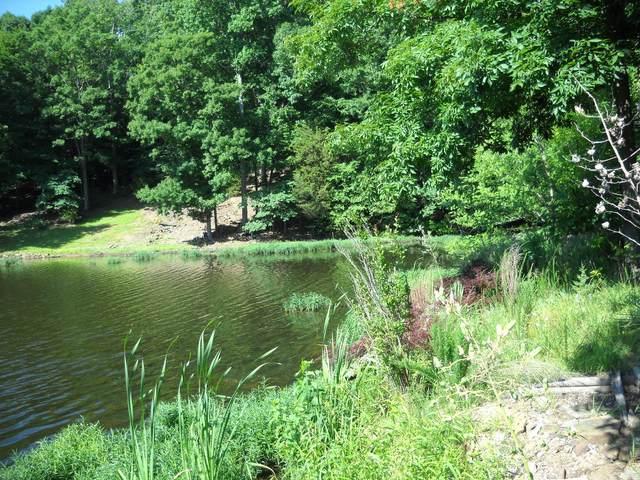 13 Sugar Creek Road, Goreville, IL 62939 (MLS #10968701) :: Suburban Life Realty
