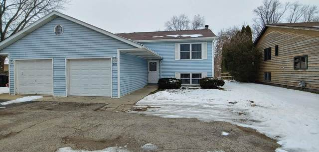 905 E Liberty Street, Wauconda, IL 60084 (MLS #10968869) :: Schoon Family Group