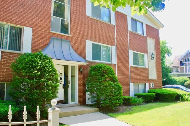 338 S Euclid Avenue #2, Oak Park, IL 60302 (MLS #10969021) :: Schoon Family Group