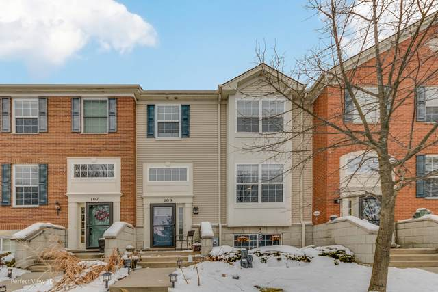 109 Willey Street #109, Gilberts, IL 60136 (MLS #10969141) :: Schoon Family Group