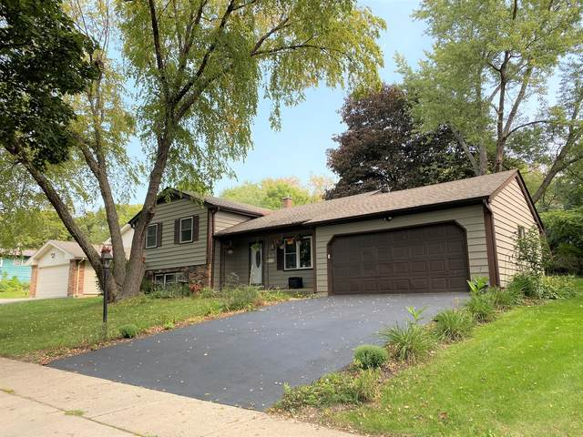 619 Scott Street, Algonquin, IL 60102 (MLS #10969151) :: Touchstone Group
