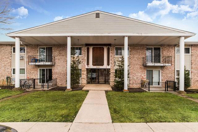 9351 Lady Bird Lane 203C, Des Plaines, IL 60016 (MLS #10969321) :: Helen Oliveri Real Estate