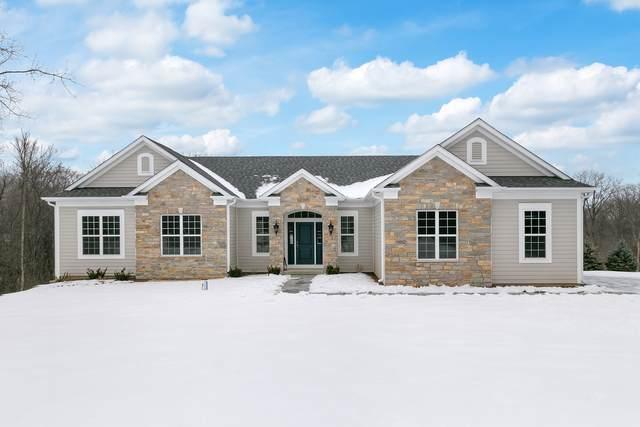 18662 W Capri Court, Libertyville, IL 60048 (MLS #10969542) :: Helen Oliveri Real Estate