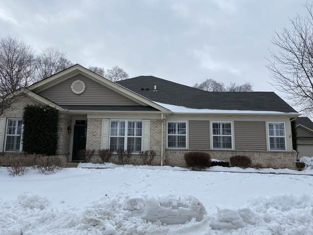 101 Enfield Lane, Grayslake, IL 60030 (MLS #10969661) :: Helen Oliveri Real Estate