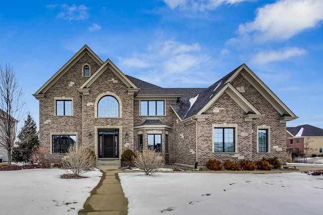 4303 Winterberry Avenue, Naperville, IL 60564 (MLS #10969693) :: The Dena Furlow Team - Keller Williams Realty