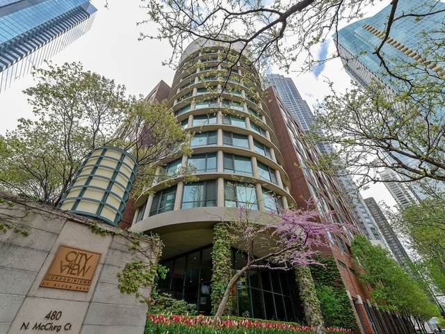 480 N Mcclurg Court #1018, Chicago, IL 60611 (MLS #10969721) :: The Wexler Group at Keller Williams Preferred Realty