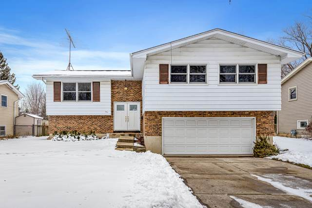 251 Fairview Drive E, St. Charles, IL 60174 (MLS #10970544) :: The Wexler Group at Keller Williams Preferred Realty