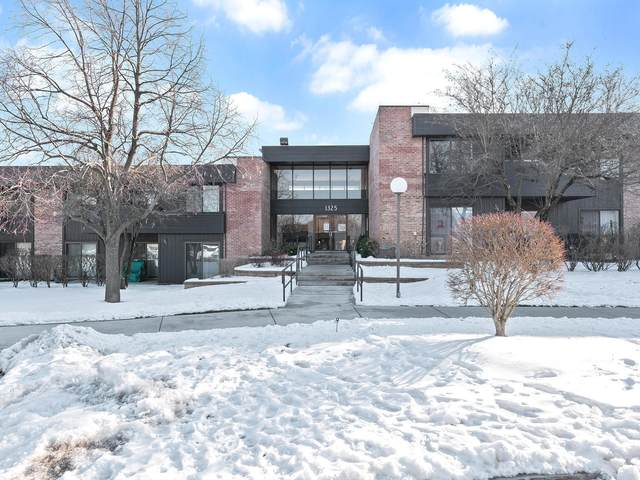 1325 N Sterling Avenue #206, Palatine, IL 60067 (MLS #10970641) :: The Wexler Group at Keller Williams Preferred Realty