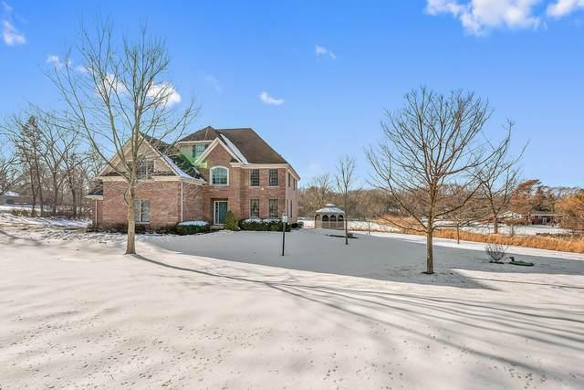 22282 W Wooded Ridge Drive, Kildeer, IL 60047 (MLS #10970770) :: Helen Oliveri Real Estate
