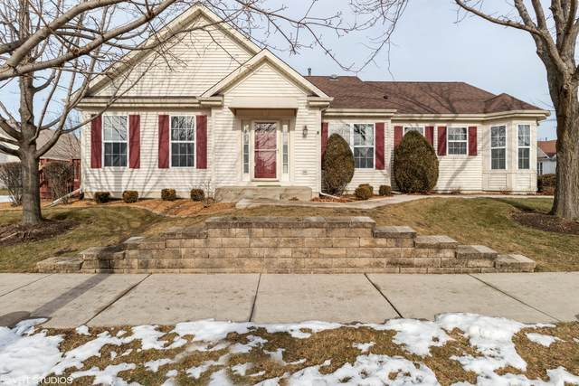 21100 W Walnut Drive, Plainfield, IL 60544 (MLS #10970979) :: Jacqui Miller Homes