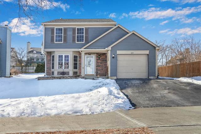 824 Buckingham Court, Mundelein, IL 60060 (MLS #10970990) :: Helen Oliveri Real Estate